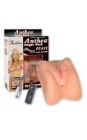 Маструбатор вагина и анус с вибрацией 17,5см+подарок смазка